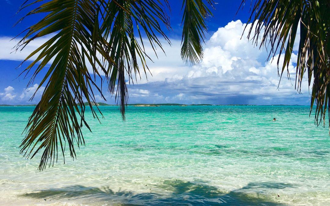 Bahamas move